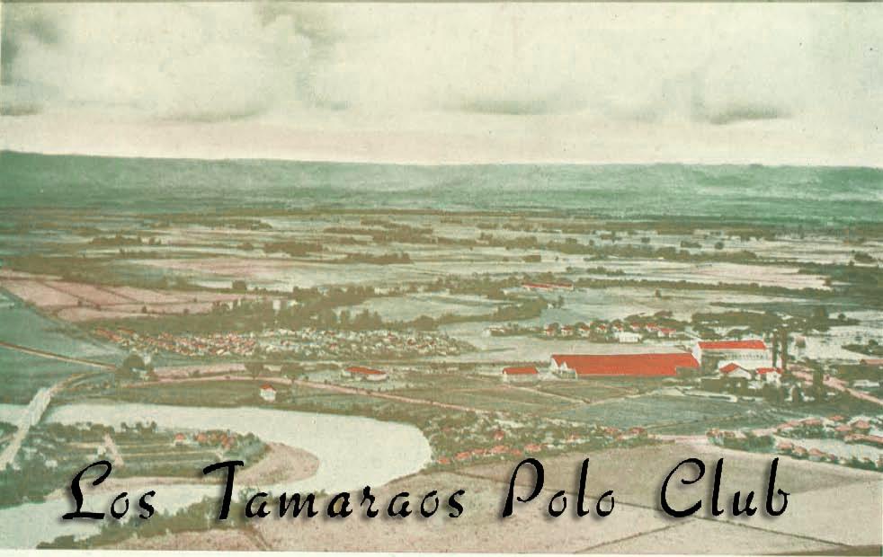 Los Tamaraos skyview-title