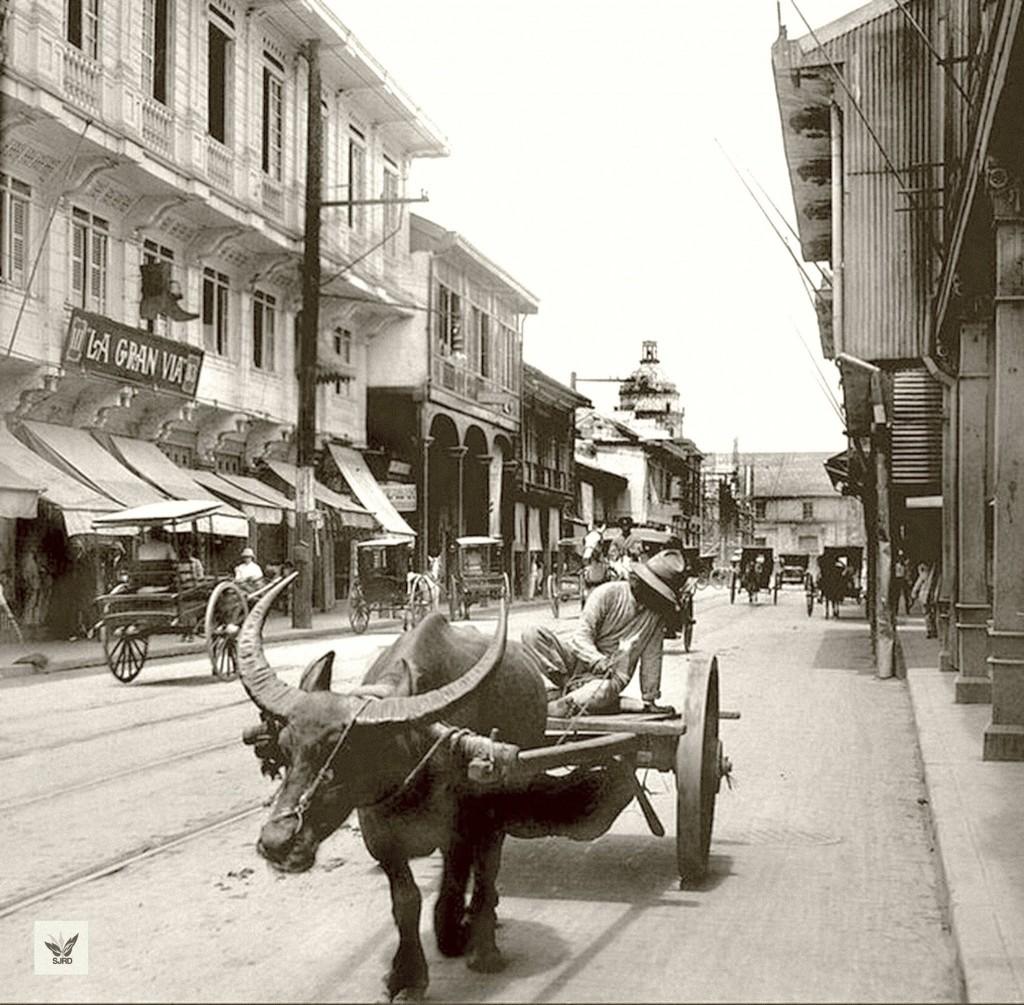 "Typical carabao ""freight"" cart in Binondo (courtesy San Juan Rizal Days)"